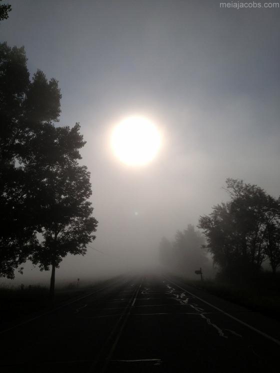 Deep Fog.meiajacobs